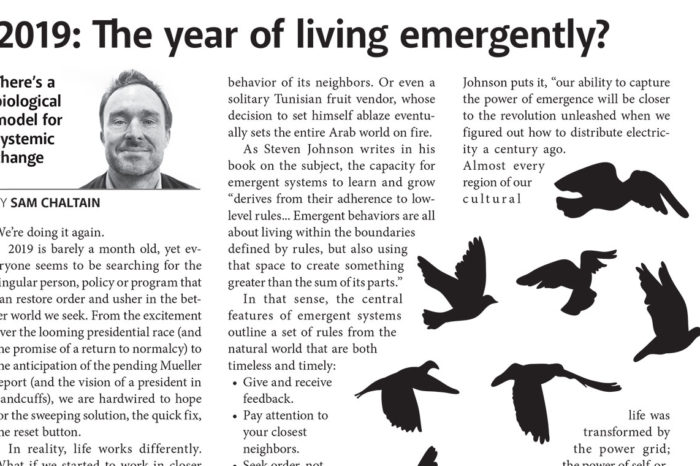2019: The year of living emergently?