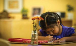 Public Montessori ECE sprouting in Oregon