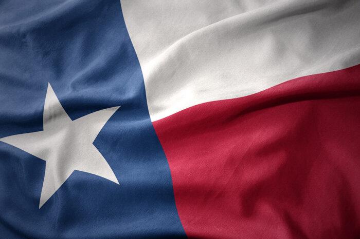 1/28/2021 • Texas • New Public Dual Language Program to Meet High Demand